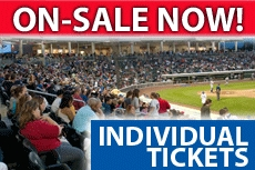 2013 Individual Tickets On Sale